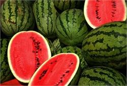 چگونه یک هندوانه خوب و رسیده و قرمز انتخاب کنیم